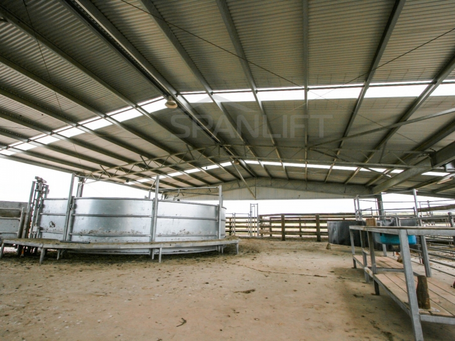 Beef Yard Cover 10 Spanlift R25Fg1 - Gallery