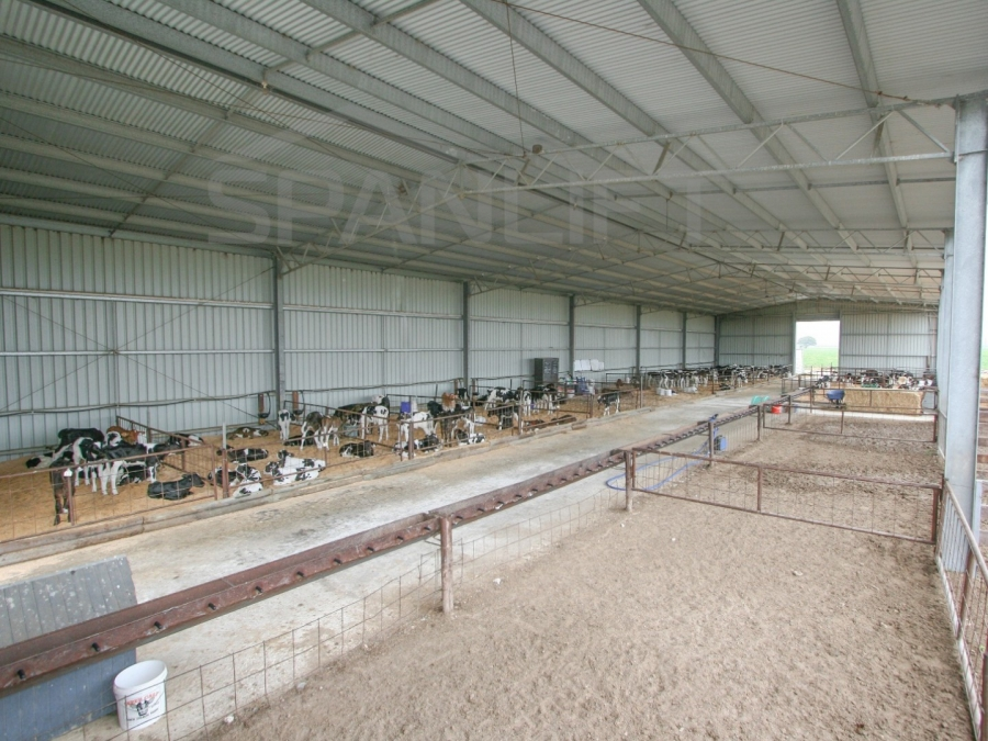 Calf Shed 8 Spanlift 8mjB6K - Gallery