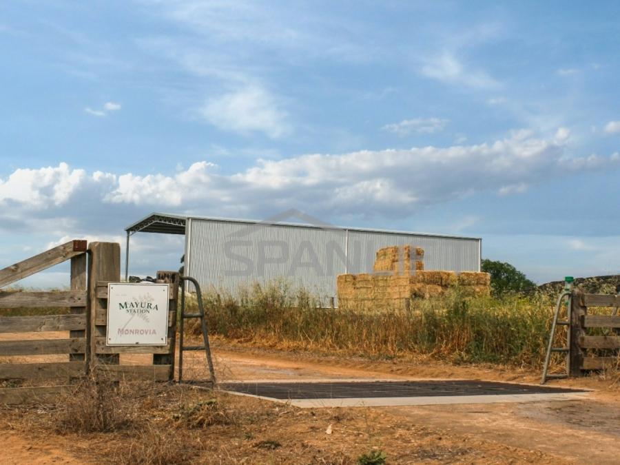 Hay Shed 9 Spanlift FGtTfg - Bulk Storage Sheds