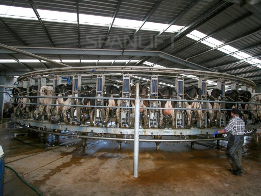 Rotary Dairy 9 Spanlift STO8xA 1