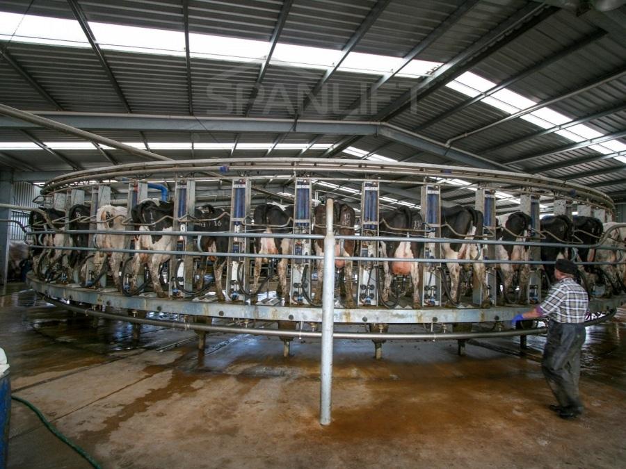 Rotary Dairy 9 Spanlift STO8xA