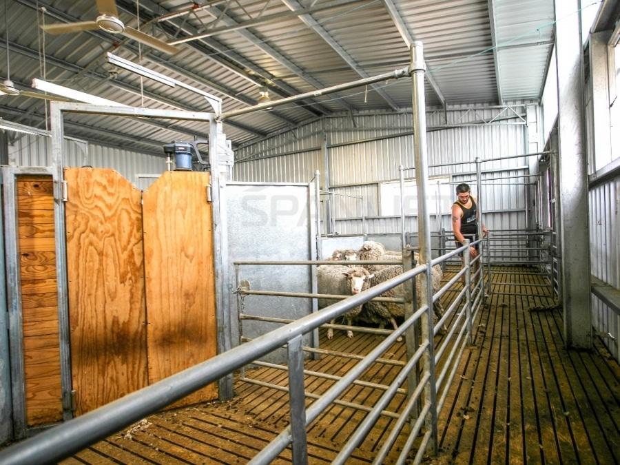 Shearing Shed 30 Spanlift A70fBS 1