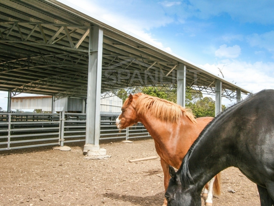 Dressage Riding Arena 4 Spanlift dgQ7o0