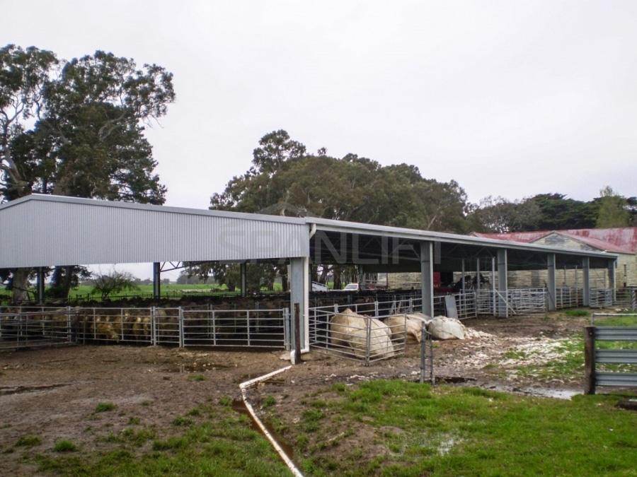 Sheep Yard Cover 11 Spanlift BUy1KY - Yard Covers