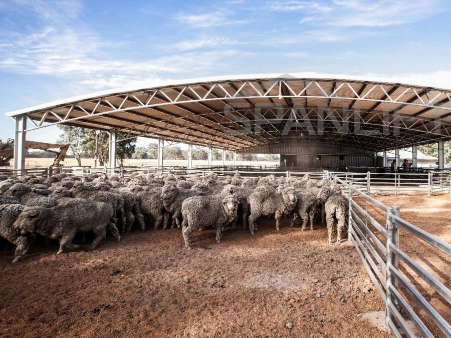 Sheep Yard Cover 13 Spanlift loXJ n - Yard Covers